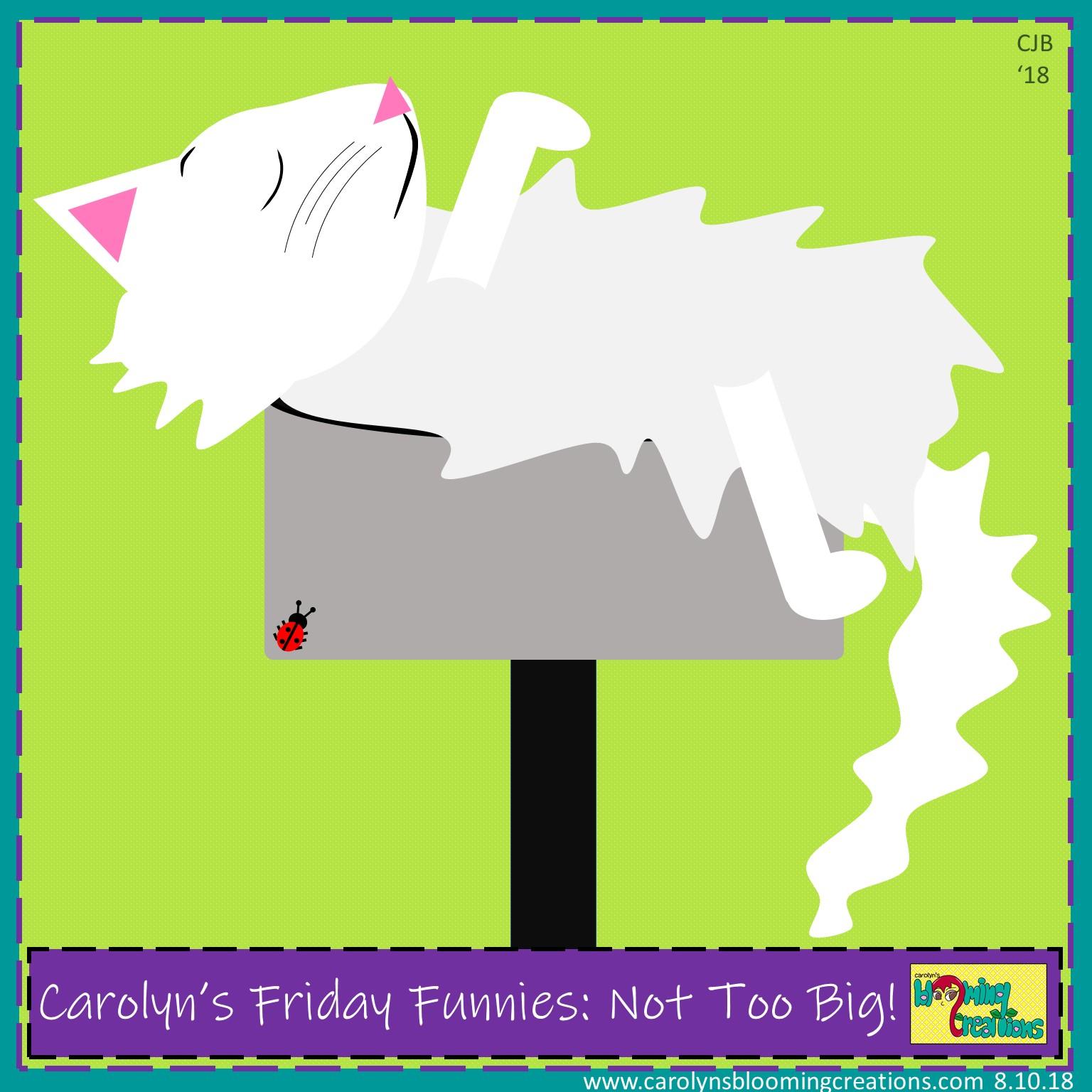 Carolyn Braden Friday Funny Not Too Big.jpg