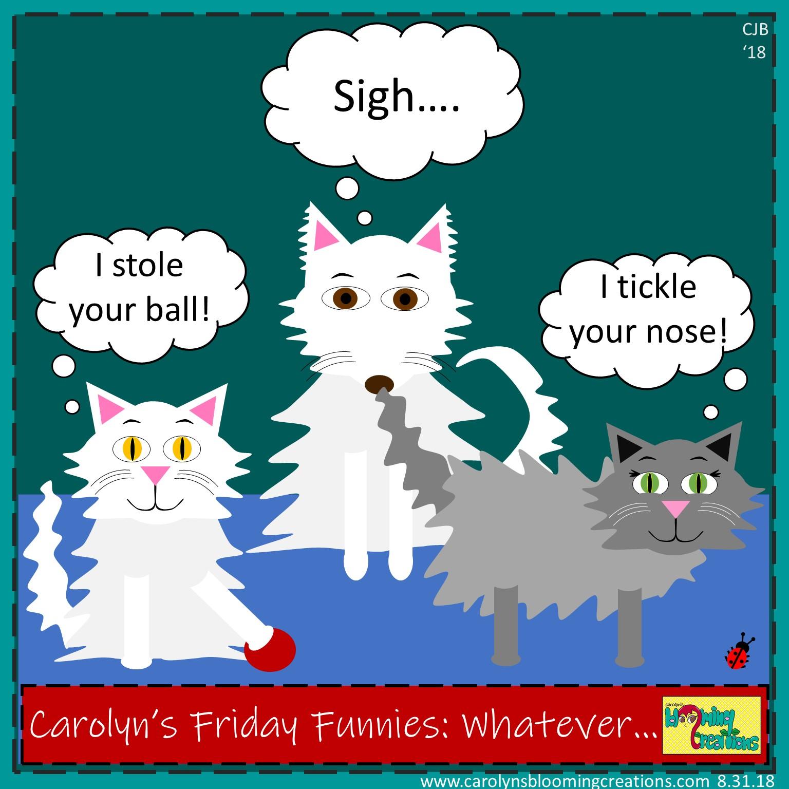 Carolyn Braden Friday Funny Whatever.jpg