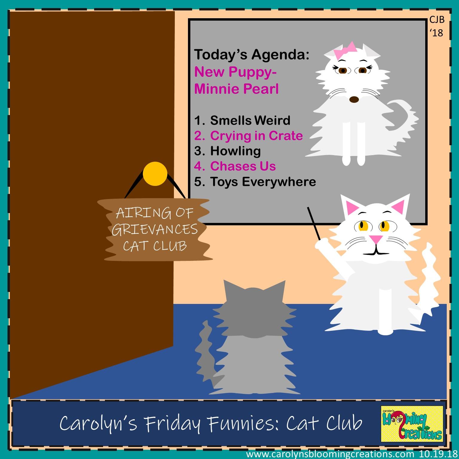 Carolyn Braden friday funny Cat Club.jpg