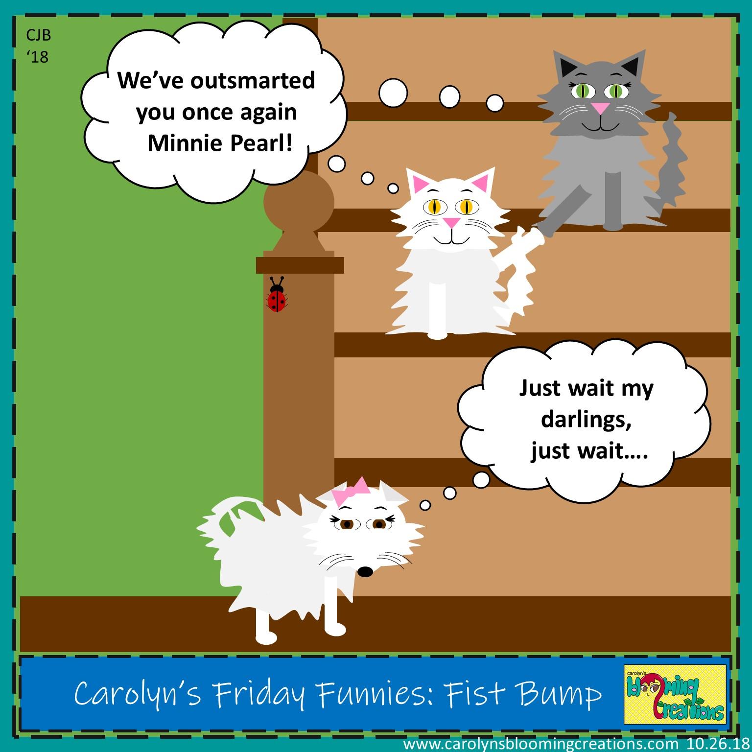 Carolyn Braden friday funny Fist Bump.jpg