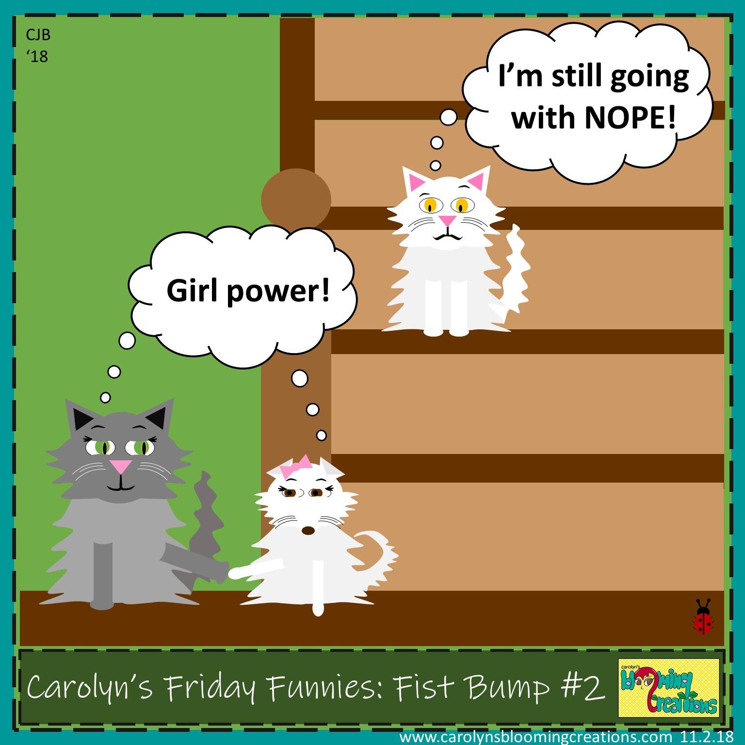 Carolyn Braden friday funny fist bump no 2.jpg