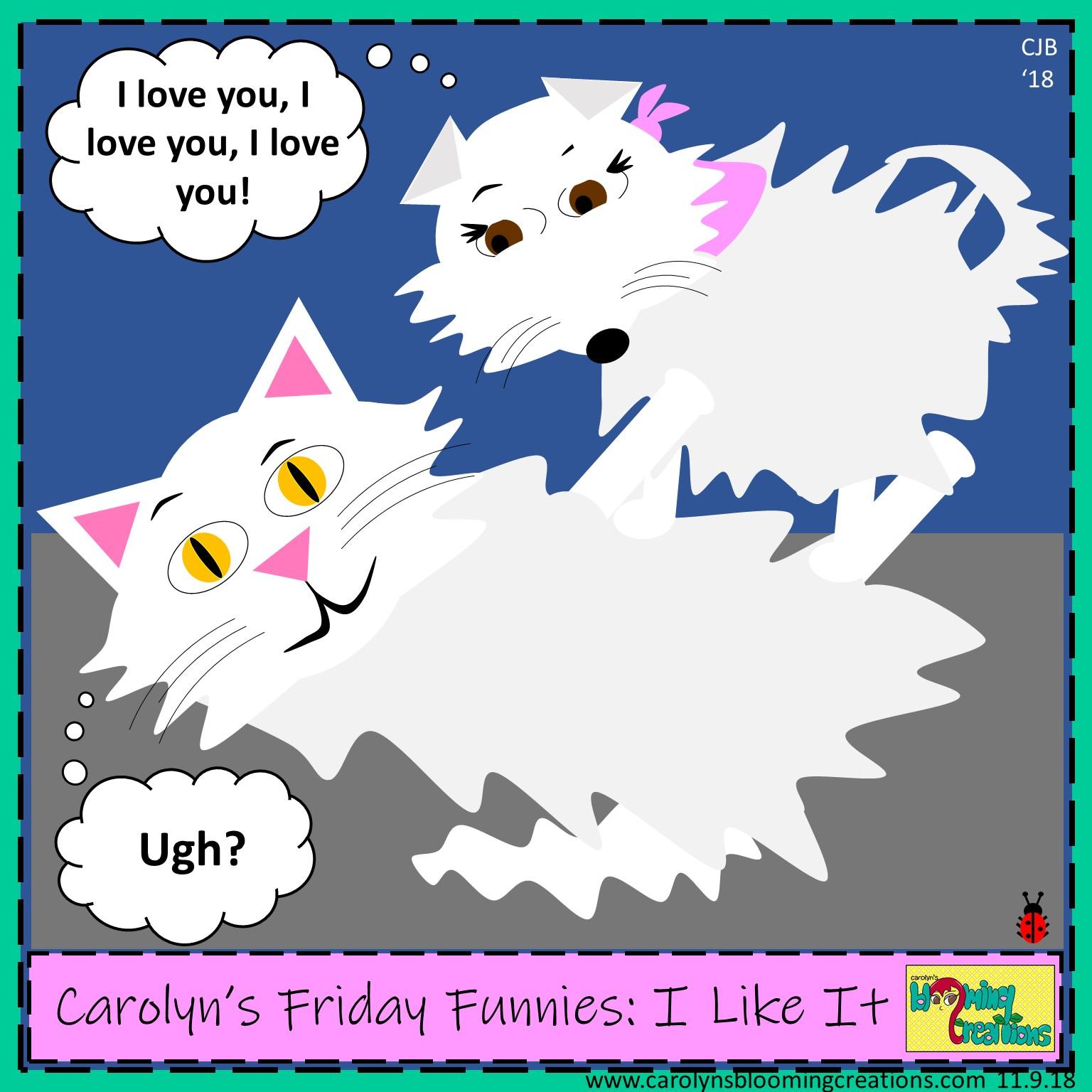 Carolyn Braden friday funny I like it.jpg