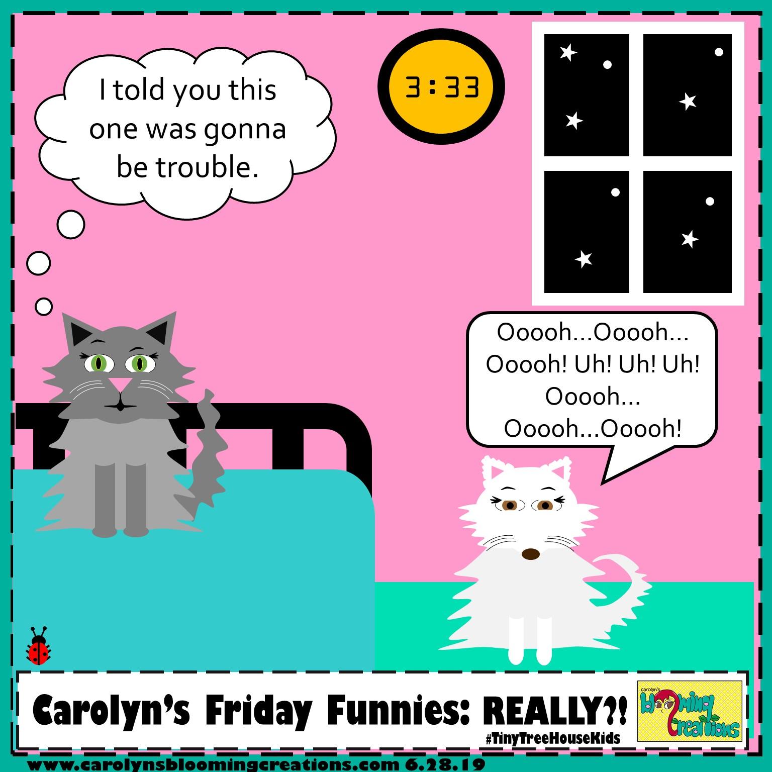 Carolyn Braden friday funny really.jpg