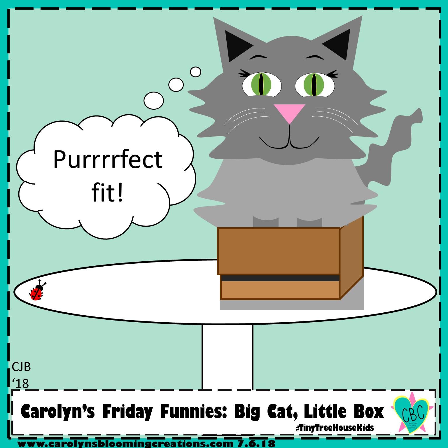 Carolyn Braden Friday Funny Big Cat Little Box 2019.jpg