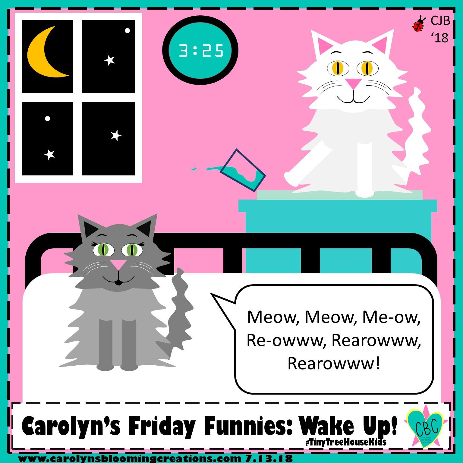 Carolyn Braden friday funny what a week.jpg