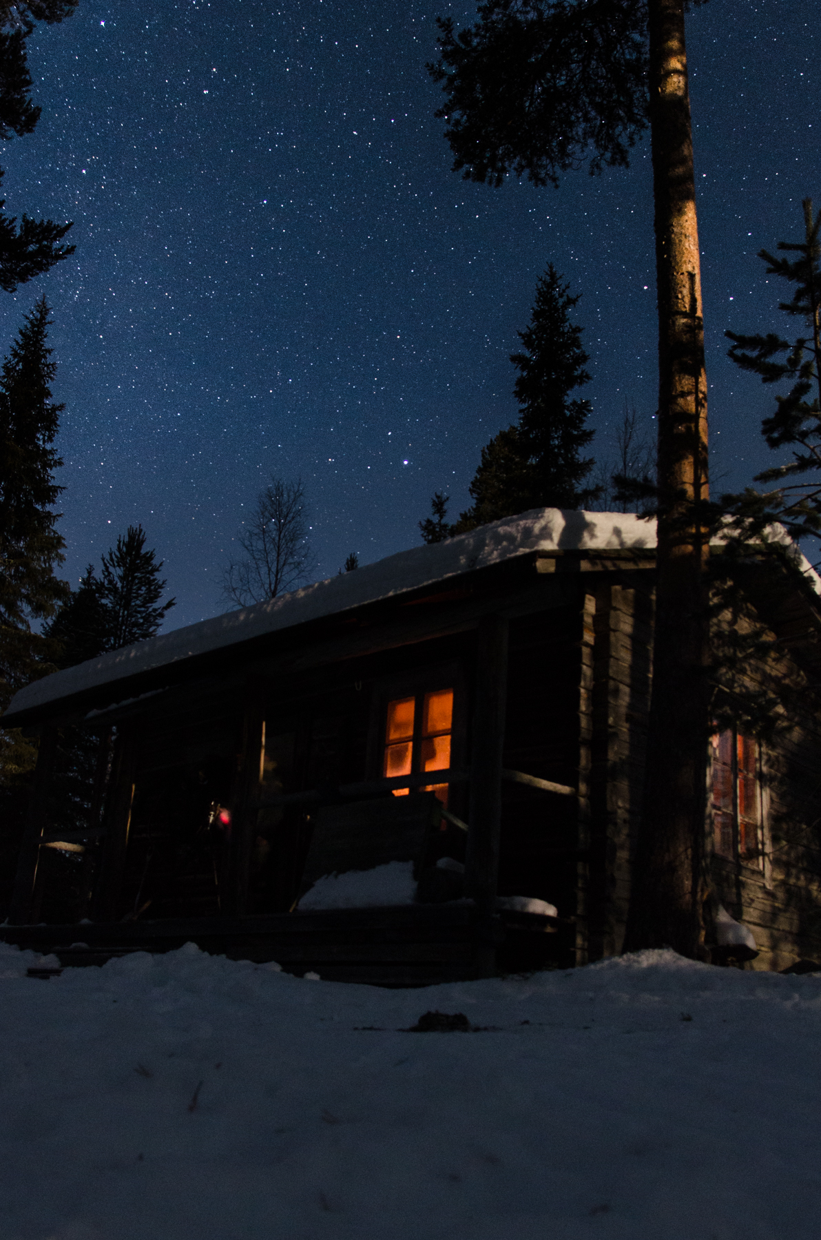 wilderness cabin on two day husky tour.jpg