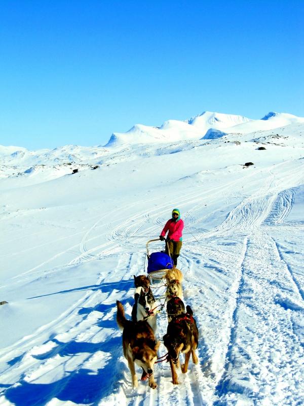 Tundra Adventures