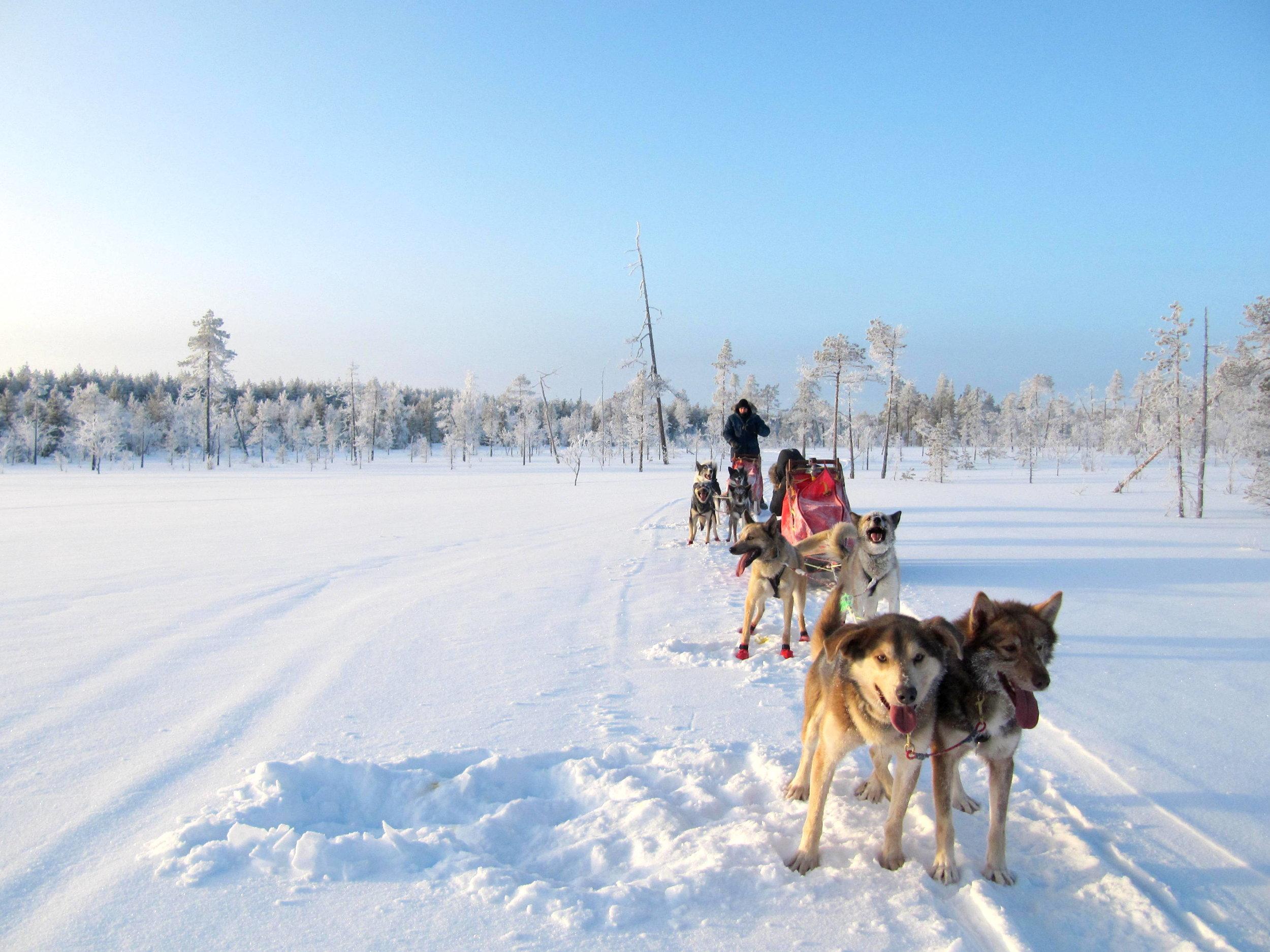 Two-day husky adventure in Ylläs, Finnish Lapland.JPG