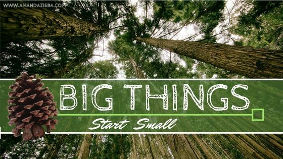 big things start small.jpg