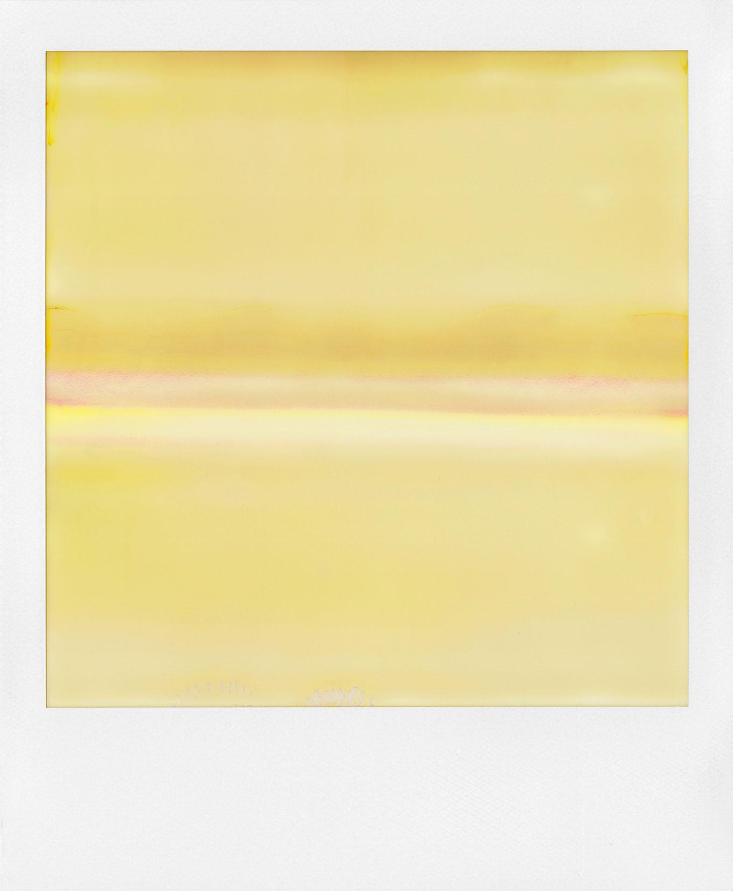 Ruined Polaroid #38 (2011)