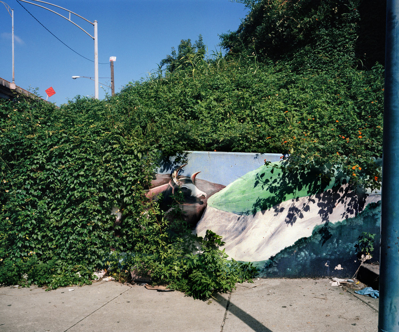 Bull Mural (1999)