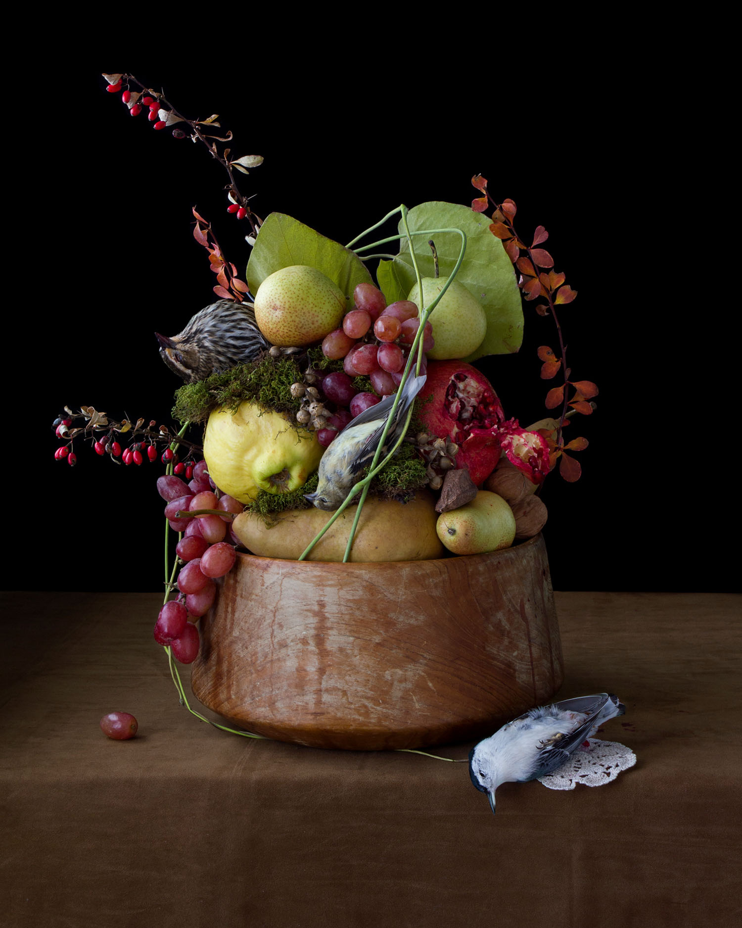 On Ripeness and Rot #16, (fall fruit) (2013)