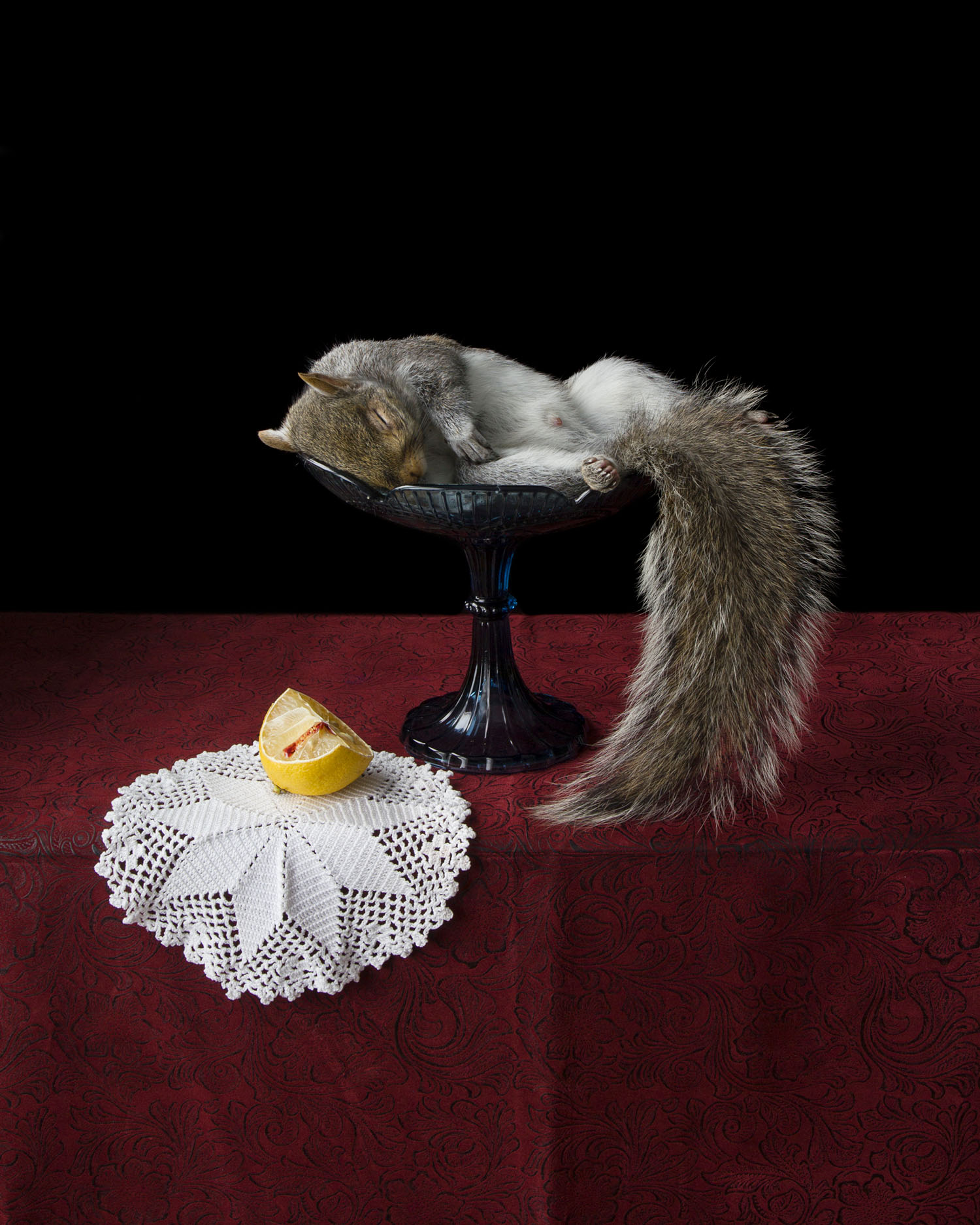 On Ripeness and Rot #17 (Lemon and Squirrel) (2013)