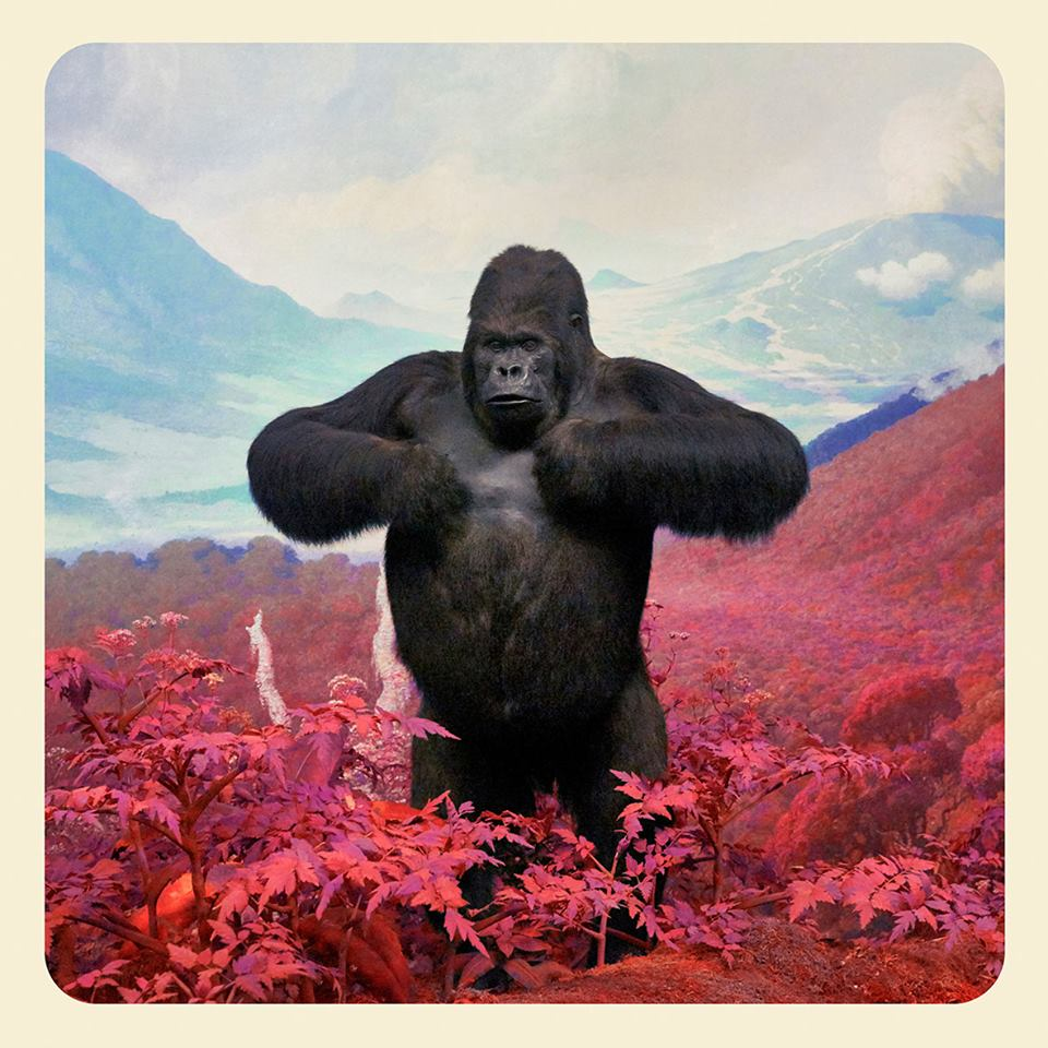 A photograph from the Mountains of Kong series by Jim Naughten.