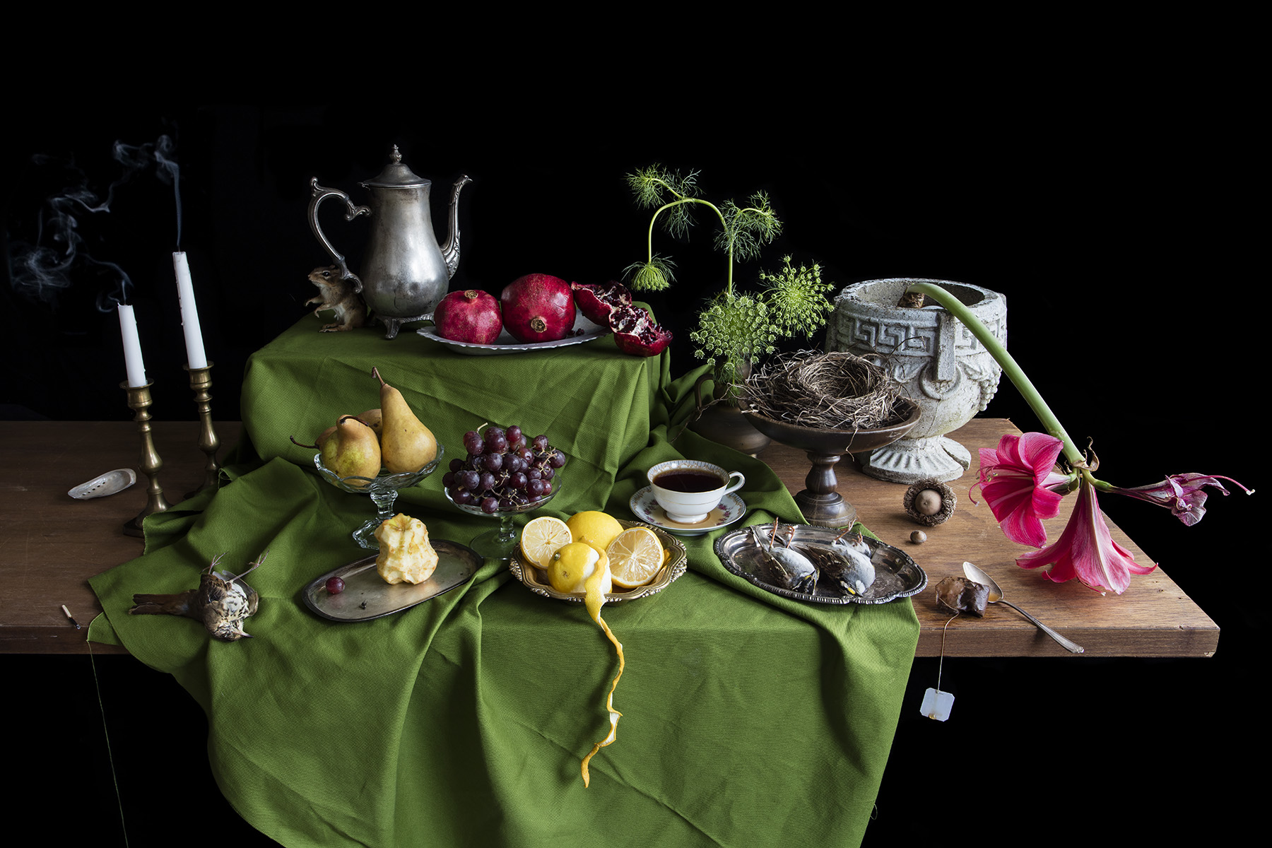 Still Life photograph by Kimberly Witham.