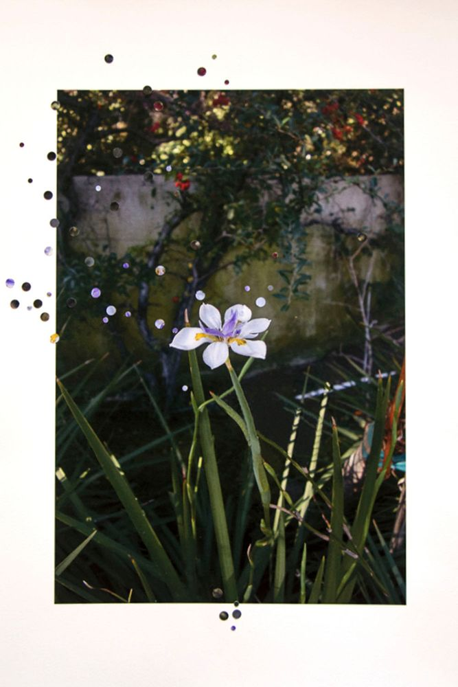 klompching-gallery-fresh2019-nathalie-seaver.10.jpg