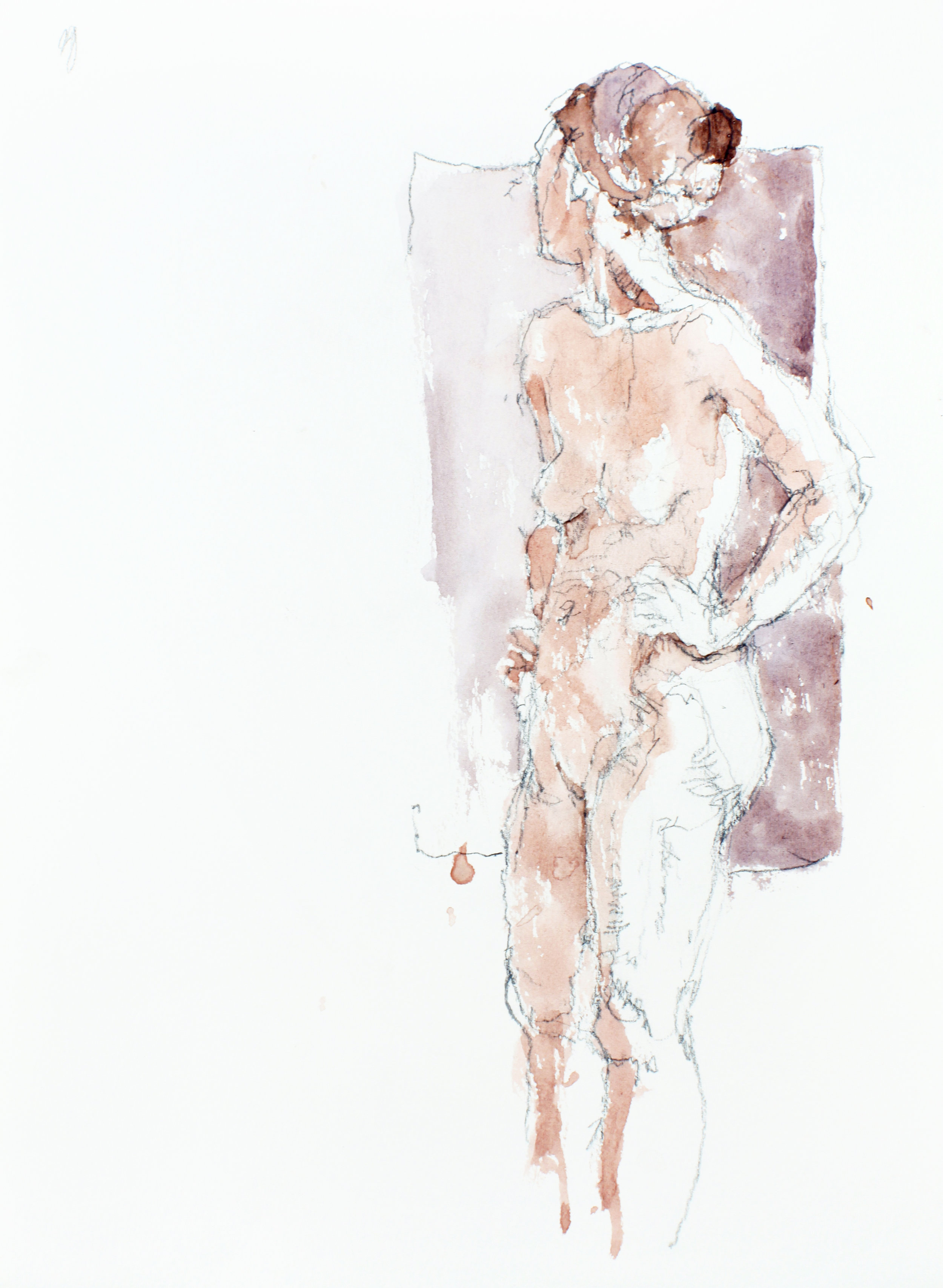 2007_watercolour_and_pencil_on_paper_15x11in_38x28cm_WPF121.jpg