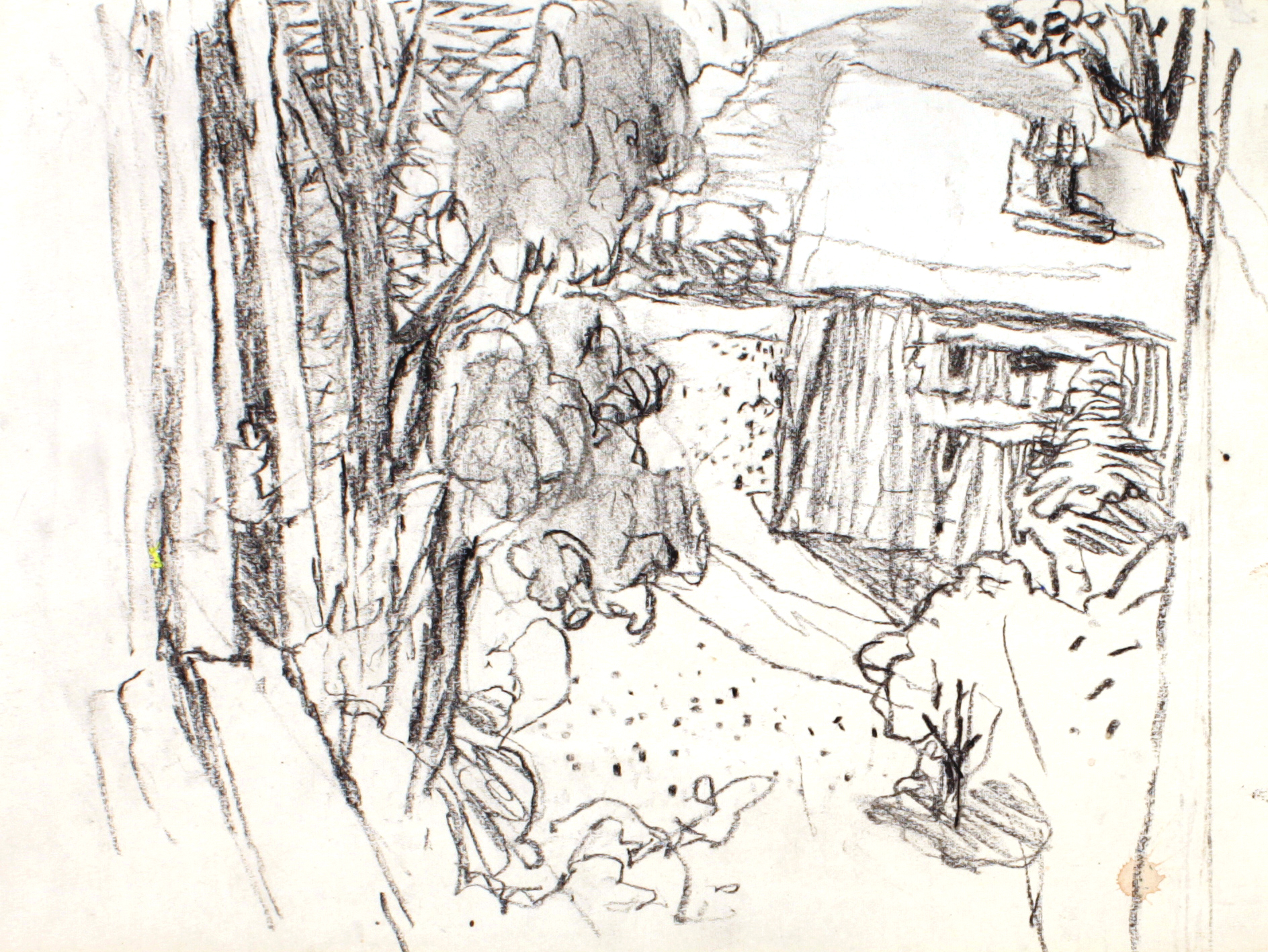 1991_Maine_charcoal_on_Paper_9x12in_WPF057.jpg