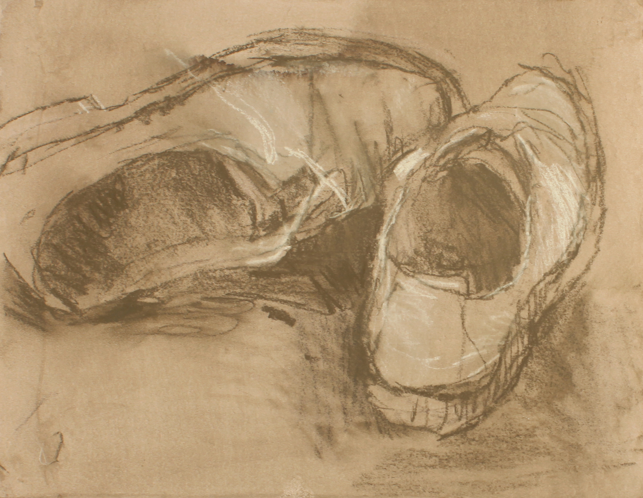 1990s_Suede_Shoes_Brown_pastel_on_painted_paper_10x13in_WPF087.jpg
