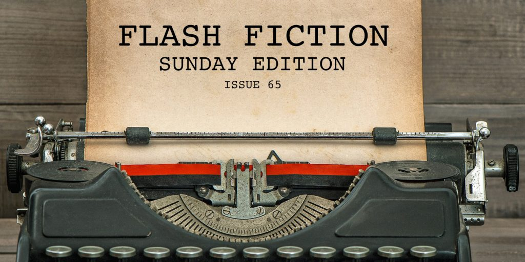 flash-fiction-sunday-edition-issue-65-1024x512.jpg