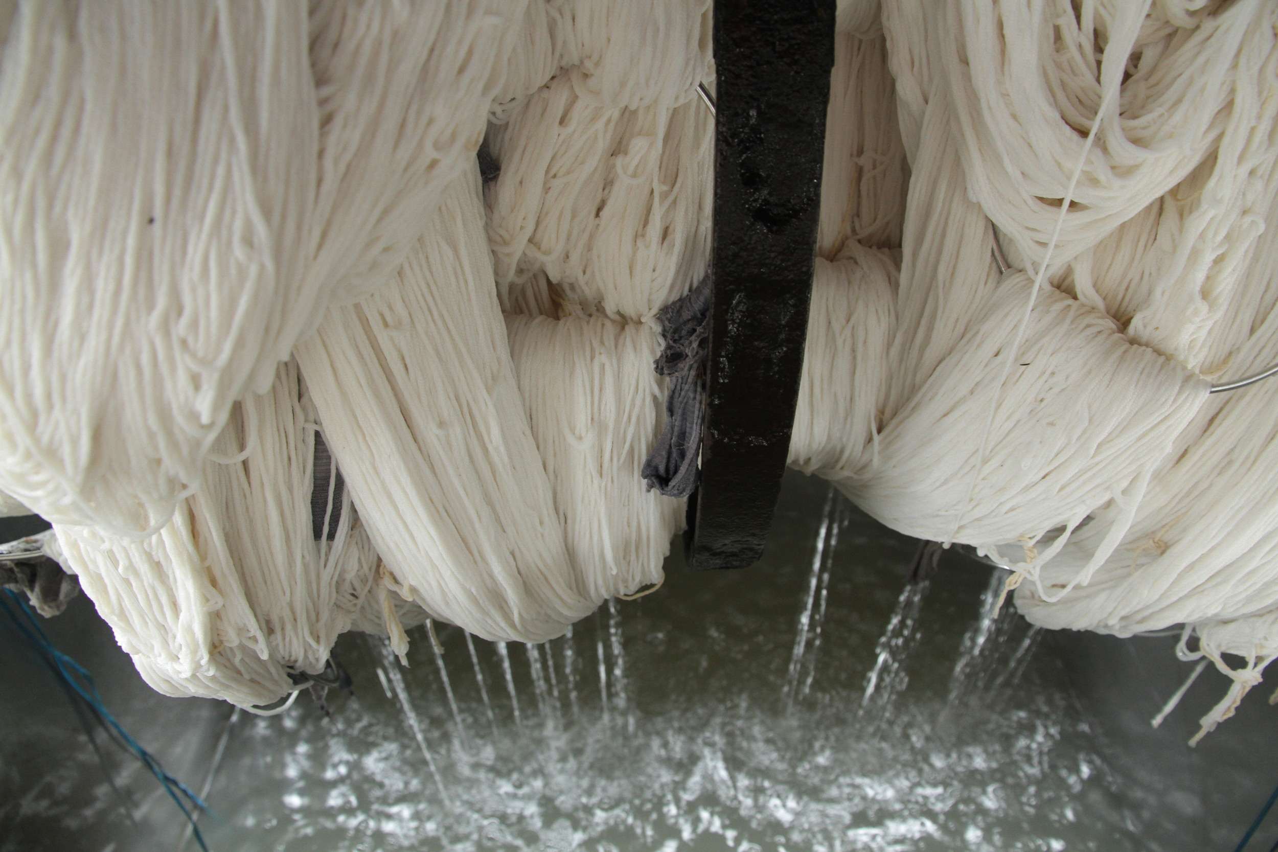 5b. Washing the Wool.JPG