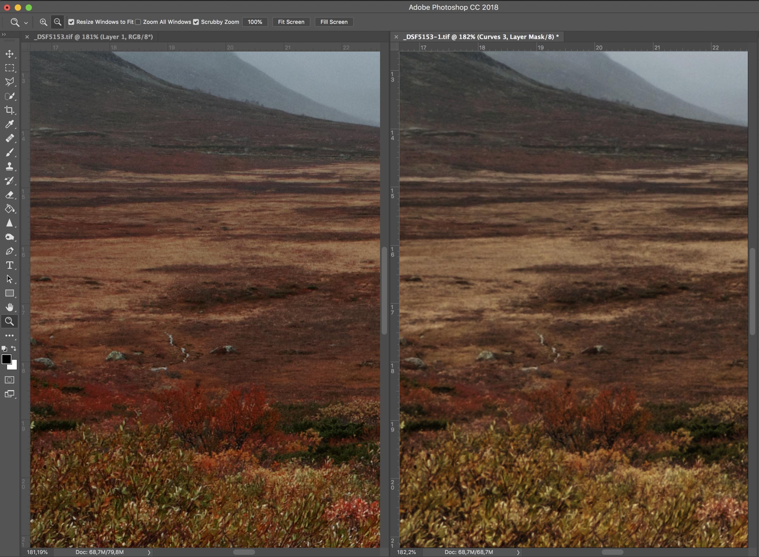 Left - Capture One RAW Mer dybde, skarpere og bedre farger. - Right - Photoshop RAW Gromsete, mangler dybde og farger.