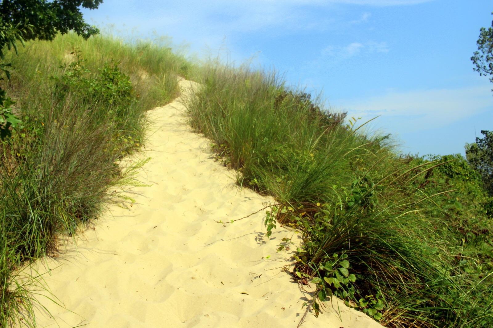 Ascending a dune.