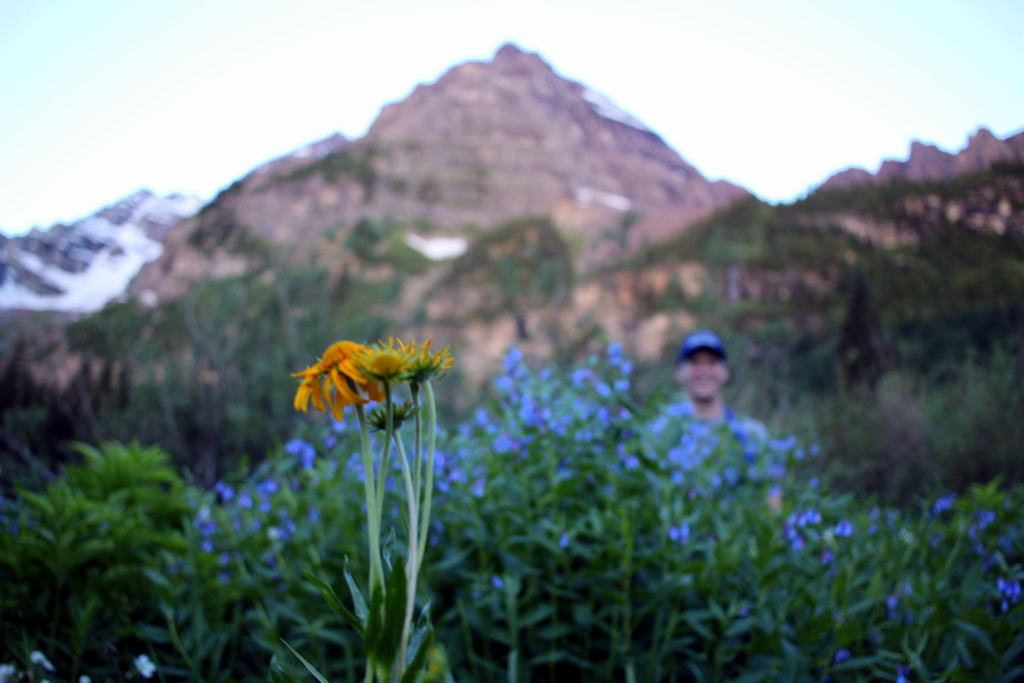 6:17 a.m. Blending in with the wildflowers.