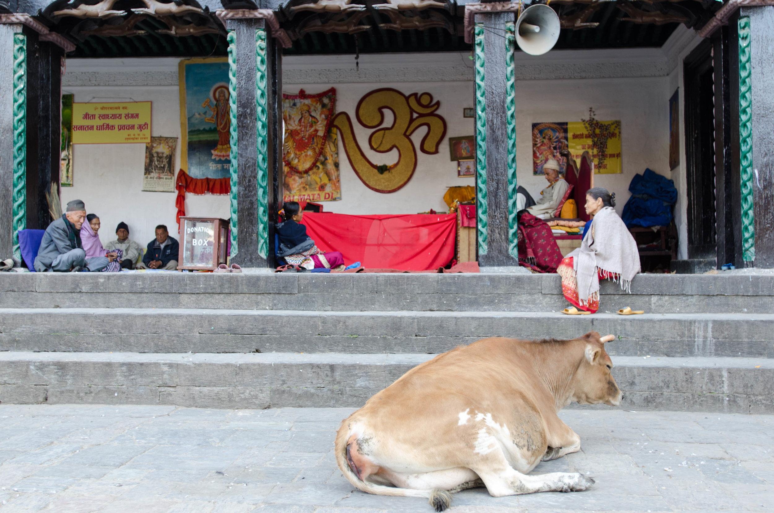 day 66 Kathmandu walking tour-57.jpg