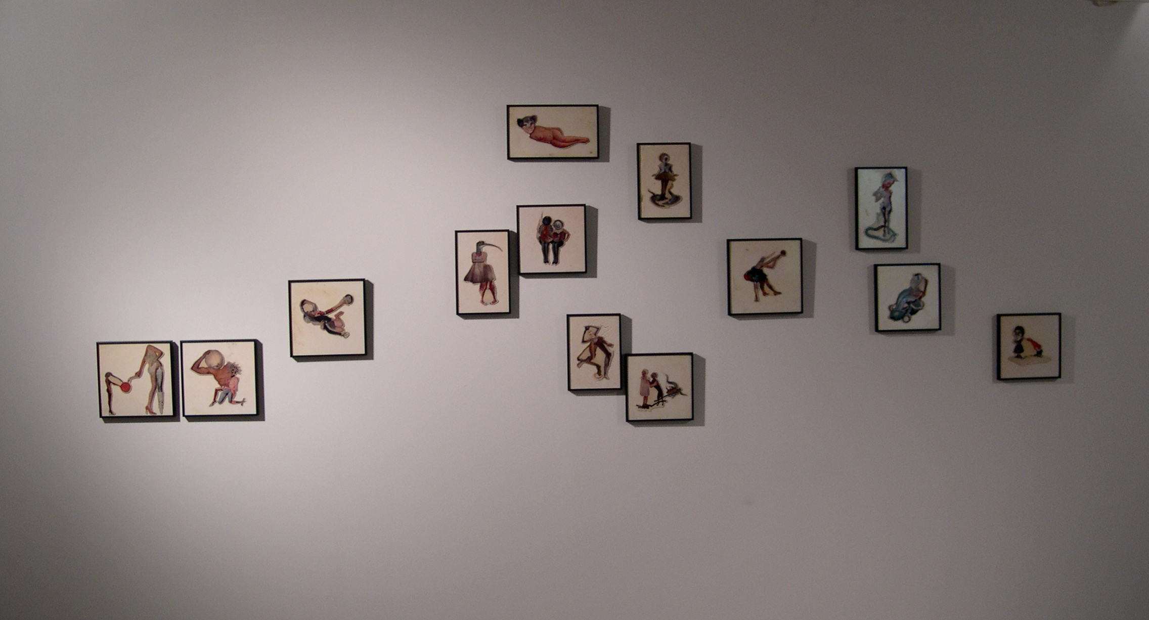 Installation View - Birds of Prey Series