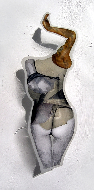 """SP ,2007,Self-produced photographs, vintage photographs, and appropriated printed materials cast in plastic resin. 11 X 14"""""""