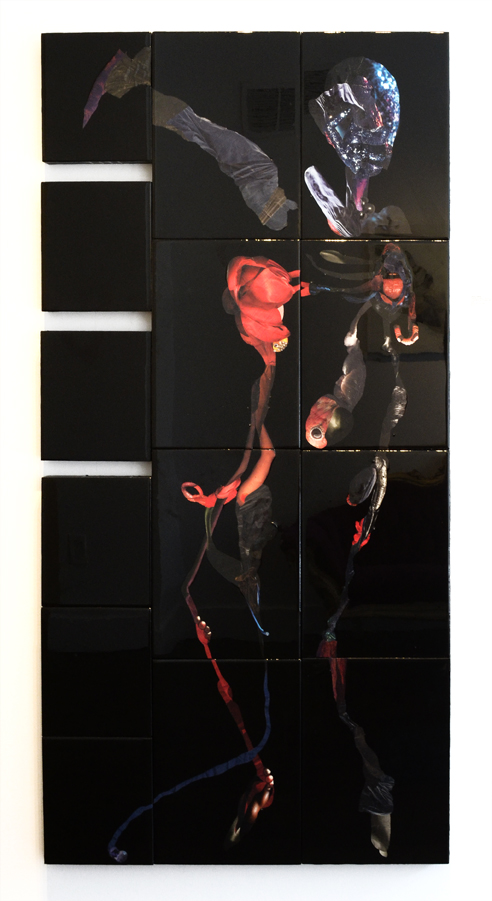 "Fracture and Split (14 Parts),  2016  Photographs, found images, paint, plastic resin, wood  Installation size can vary.  This version is approx. 34x65""h"