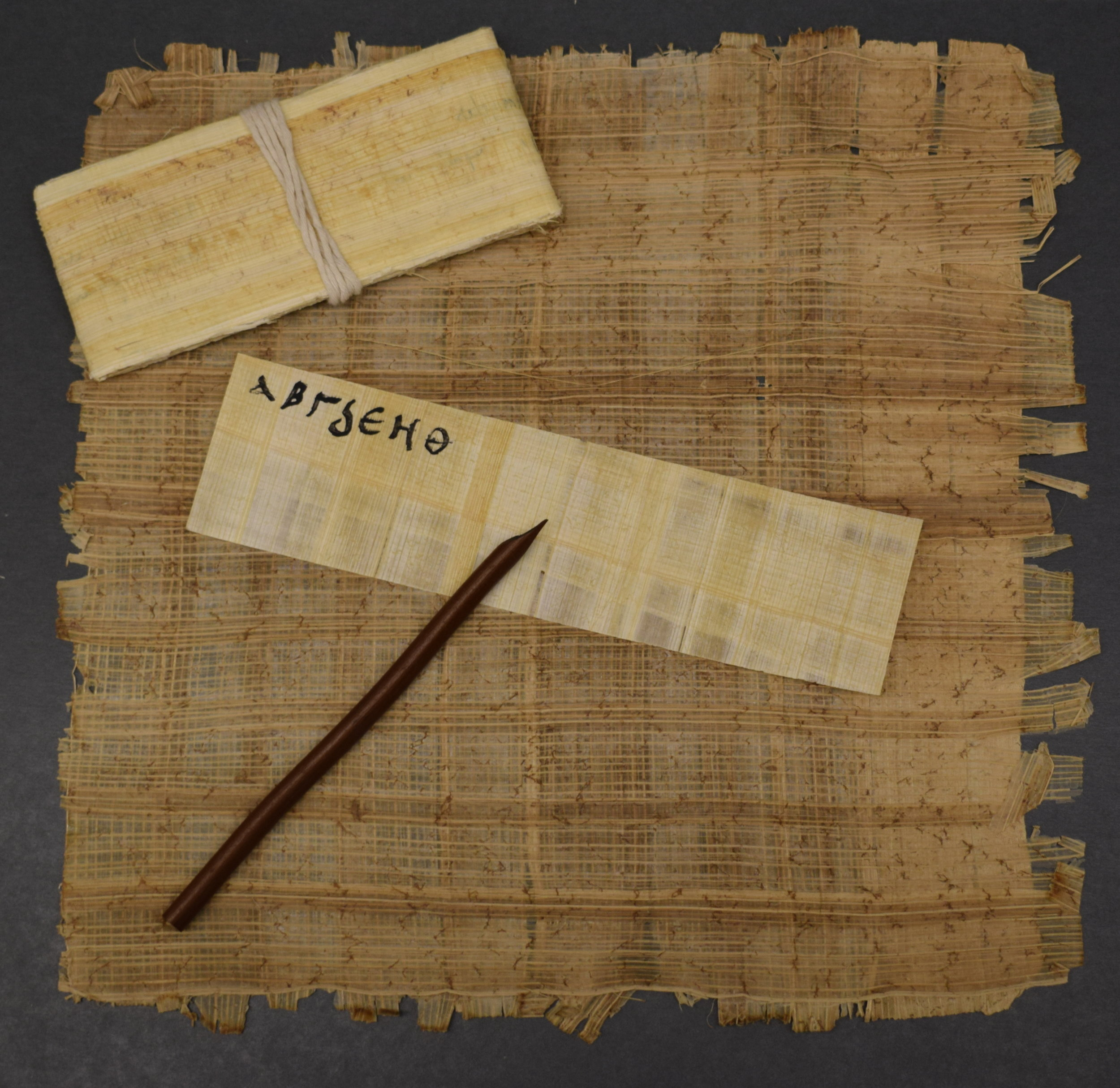 papyrus_DSC_0469.JPG