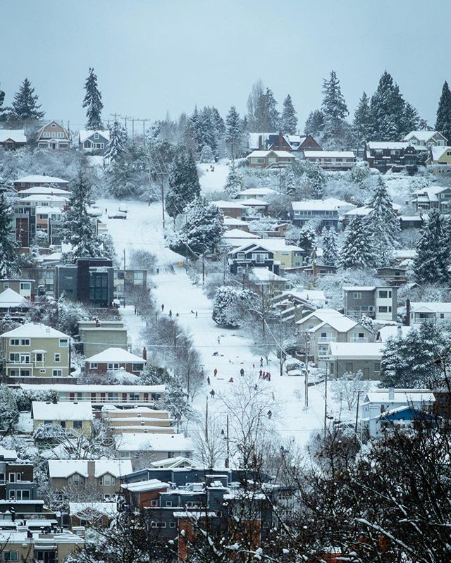 Snow day in the PNW