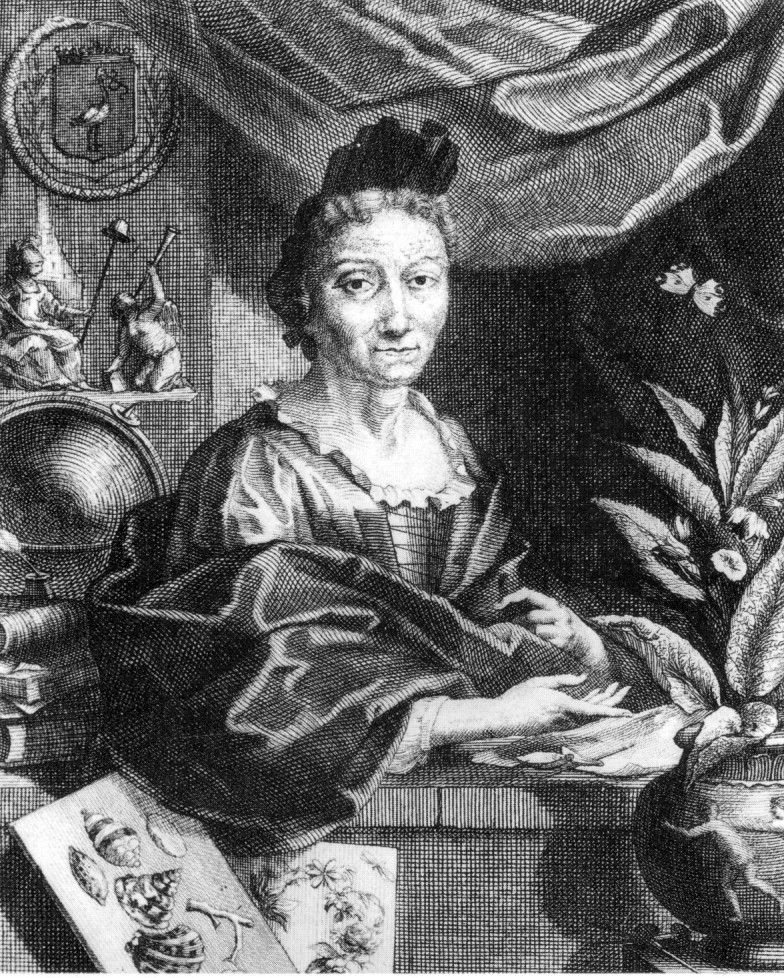 Portrait of Maria Sibylla Merian by Jacobus Houbraken, circa 1700. Image via Wikimedia Commons.