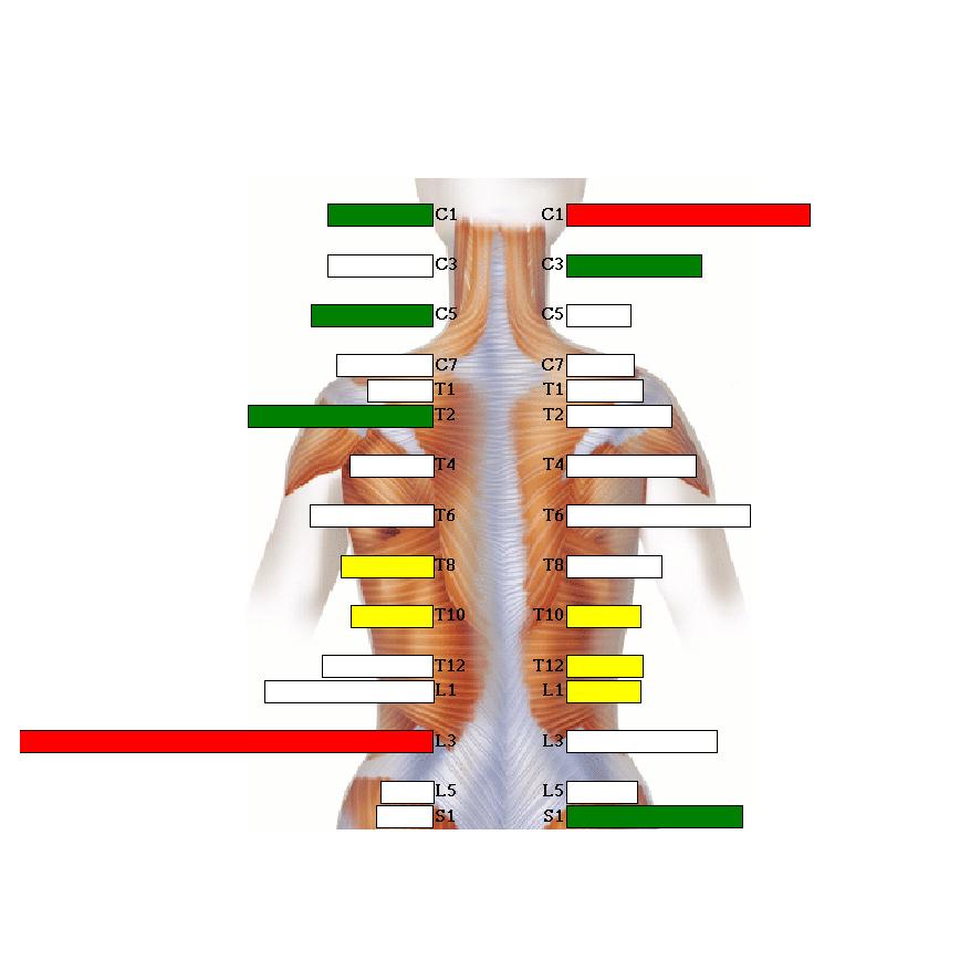 Chiropractor Testing