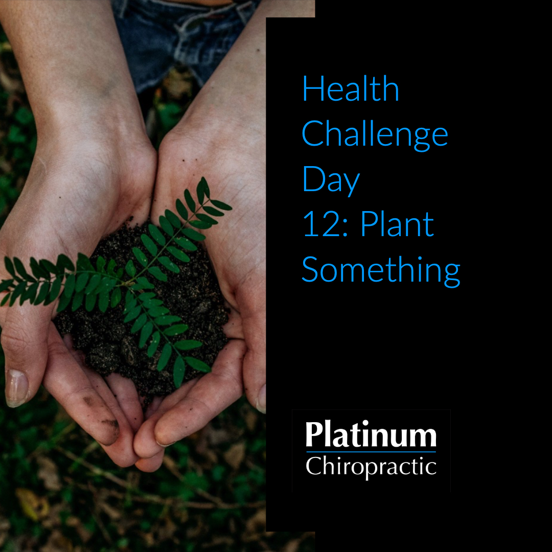 Platinum Health Challenge Day 12: Plant Something