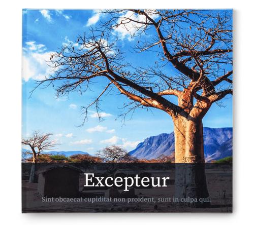 afrika-fotobuch-design.jpg