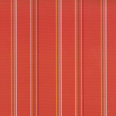 TerraceTangerine   73% polyester/ 27% acrylic    140cm |  Vertical Stripe    Indoor/Outdoor