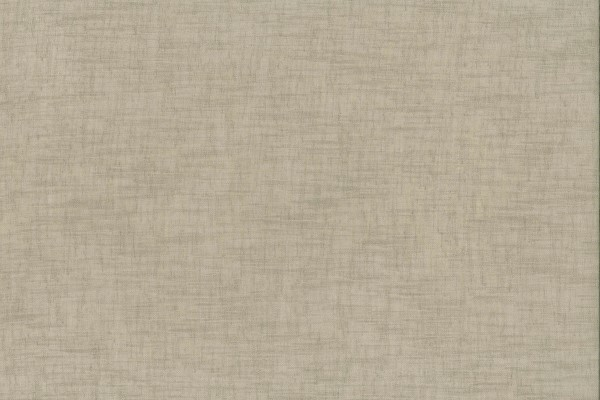 Question Safari  100% Polyester  280cm drop | Plain