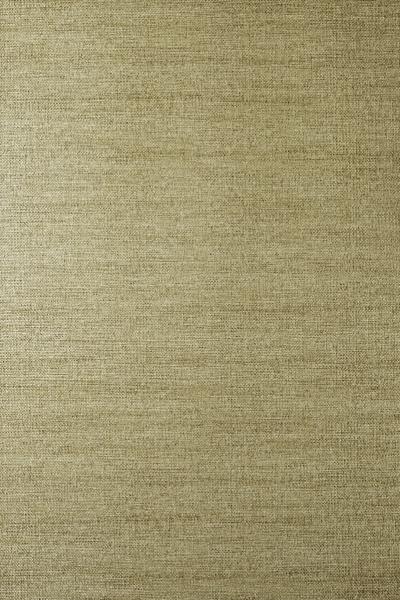 Venus Gilt  100% paper  53cm wide   Plain  Wallpaper
