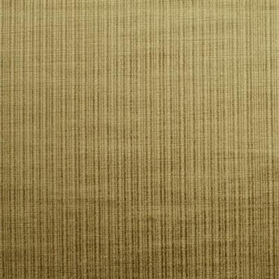 Dome Willow  80% Cotton/ 20% Viscose  145cm wide | Plain  Dual Purpose 30,000 Rubs