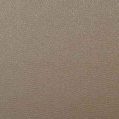 Shiraz Elephant  69% Cotton/ 31% Polyester  140cm wide | Plain  Dual Purpose 18, 000 Rubs