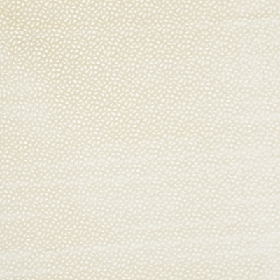 Comet Oyster  57% Polyester/ 43% Viscose  Approx. 145cm | 8cm  Dual Purpose 40,000 Rubs