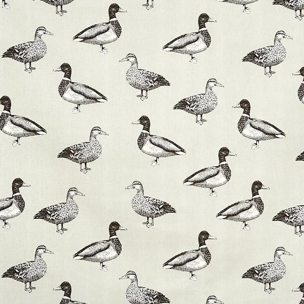 Duck Canvas  100% Cotton  137cm | 63cm  Curtaining