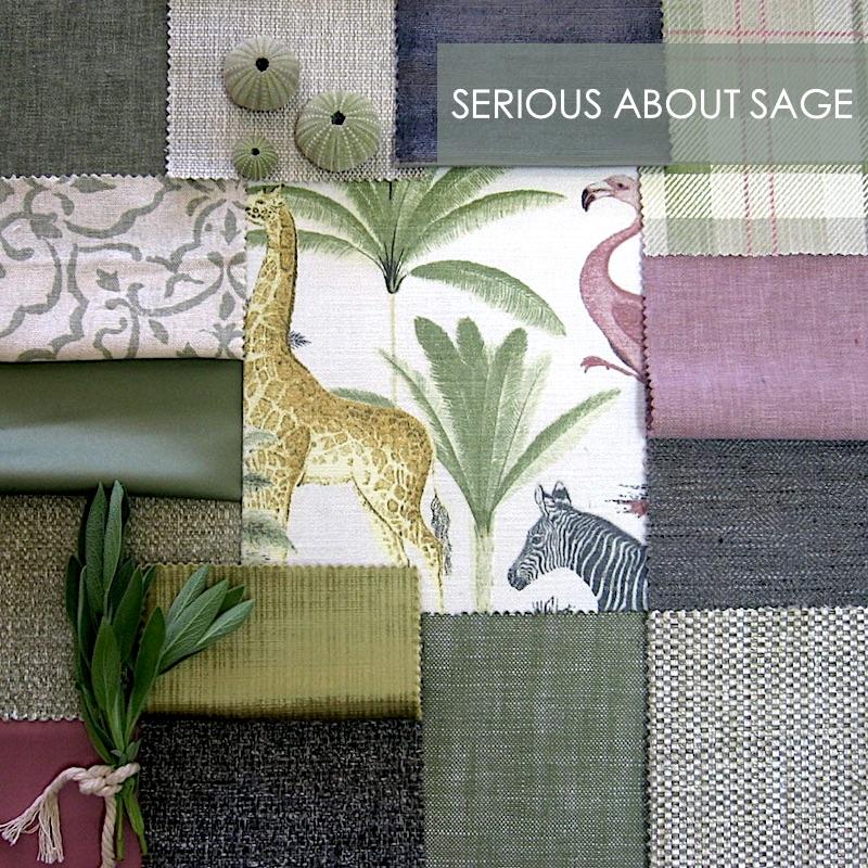 Sage Story small.jpg