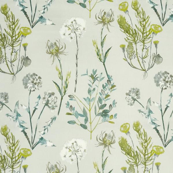 Allium Fennel  100% Cotton  Approx. 140cm | 64cm  Curtaining