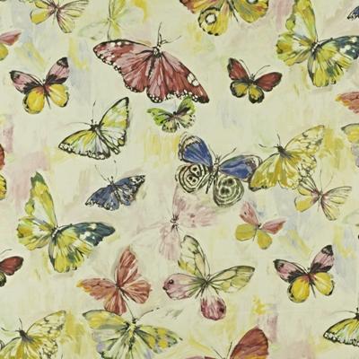 BUTTERFLY CLOUD HIBISCUS | MARDI GRAS