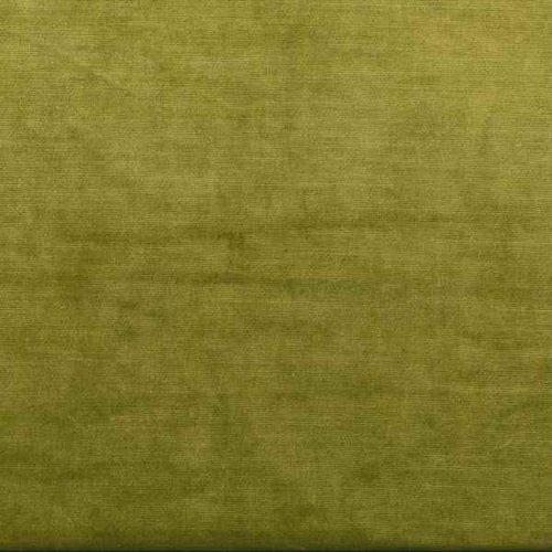 FAVOLA FERN | THE EDIT GREEN