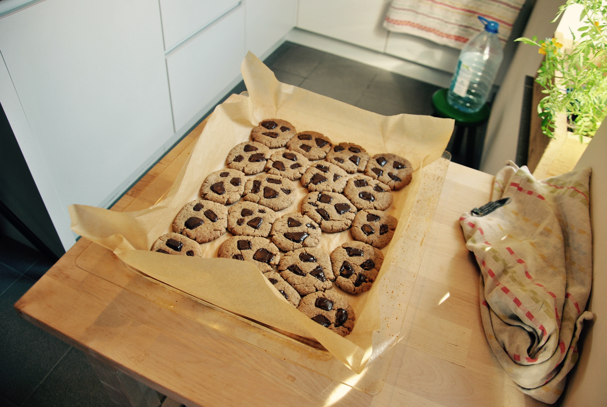 One Green Planet's ice cream sandwiches turned into chocolate chip cookies.